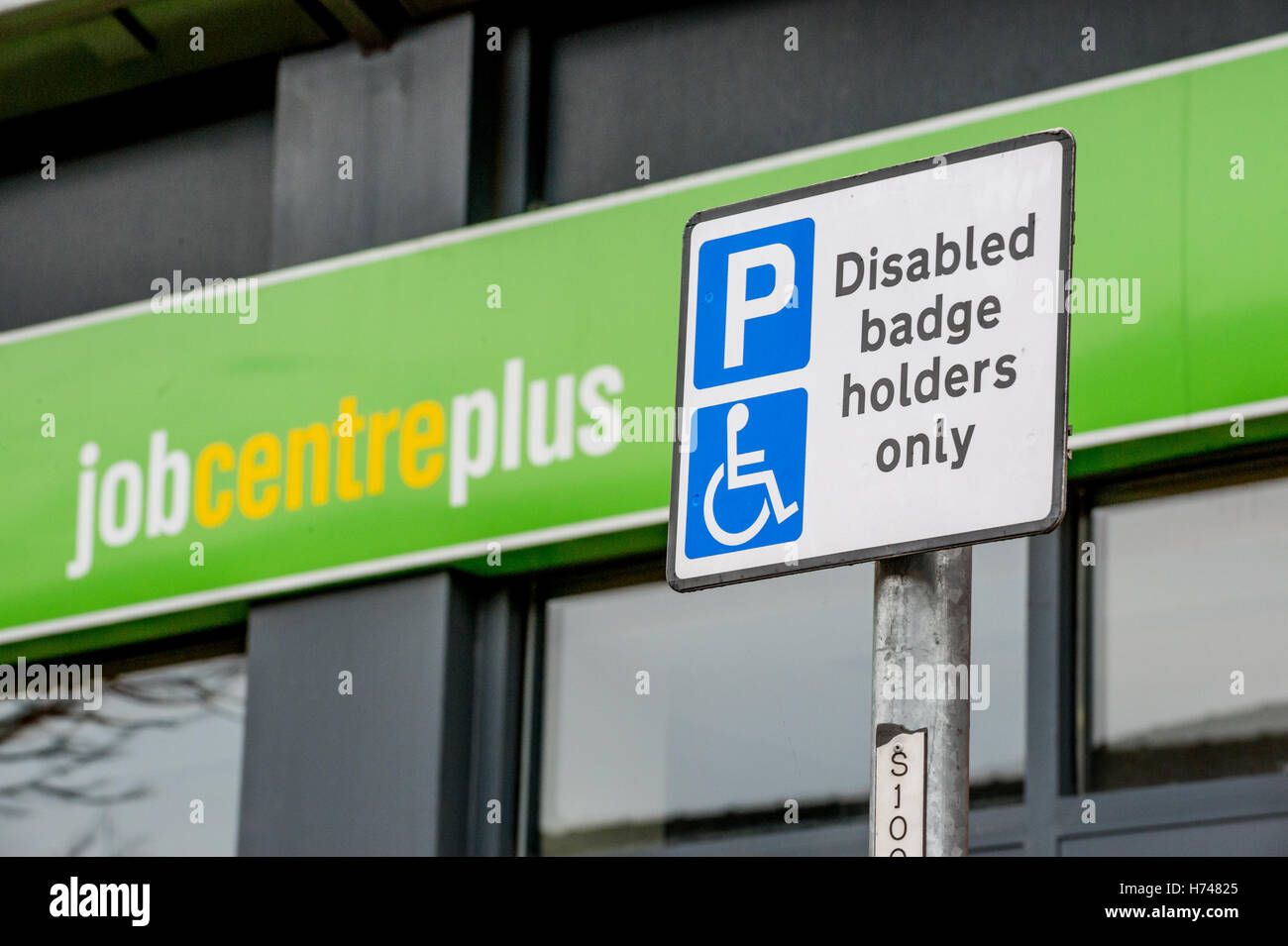 Disabled badge holder sign in front of Job Centre Plus Office, Doncaster Stock Photo