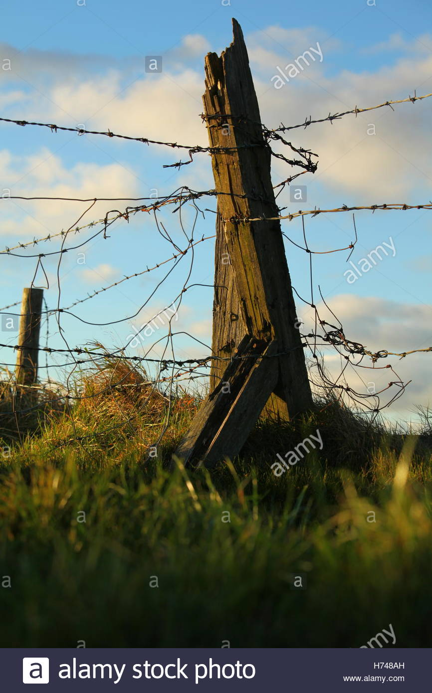 Rugged Fencepost With Barbed Wire October 2016 - Stock Image