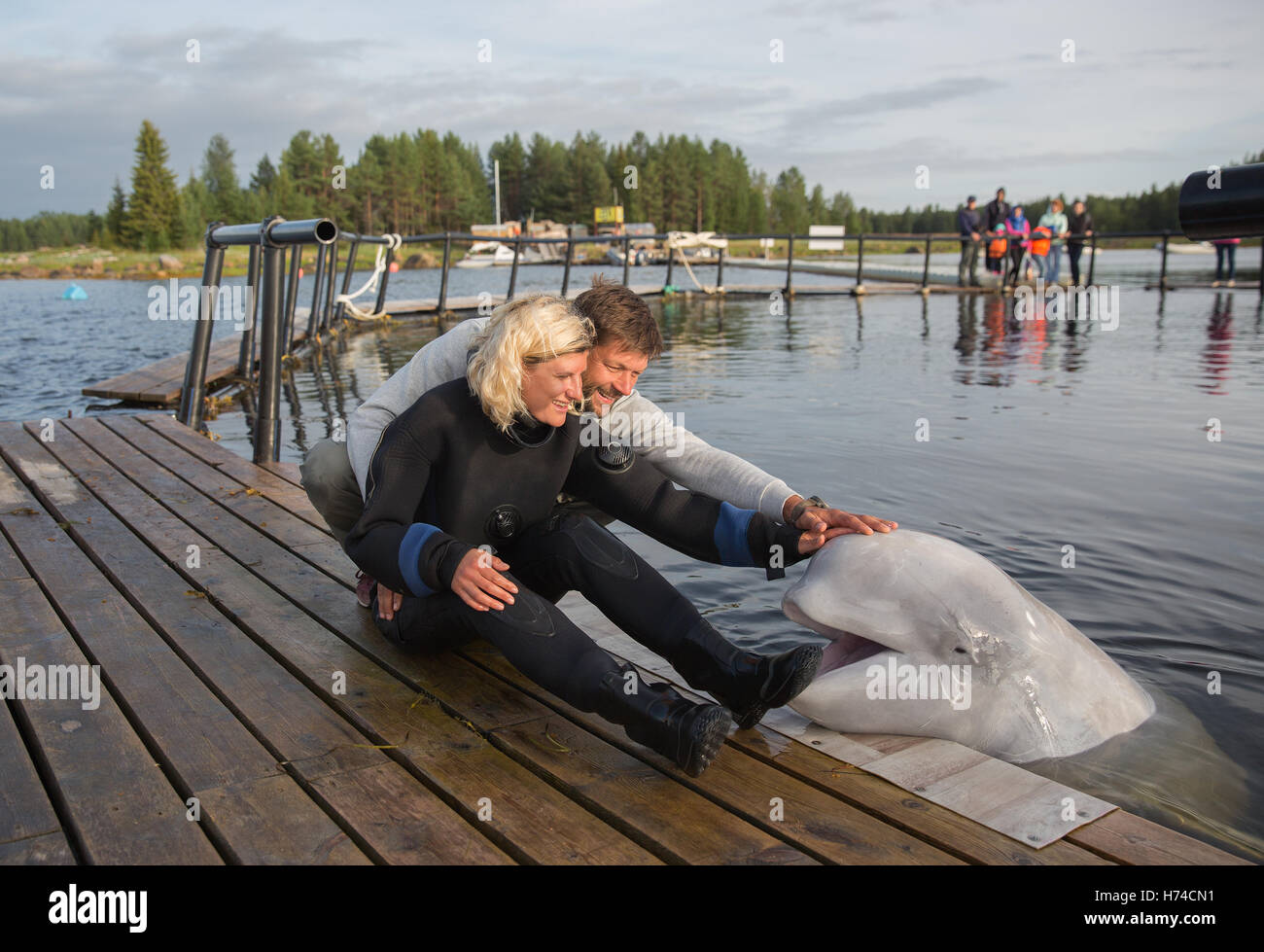 Beautiful couple is caressing of white whale - Stock Image