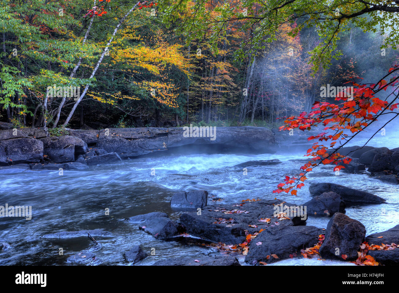 An Algonquin river rapids in autumn - Stock Image
