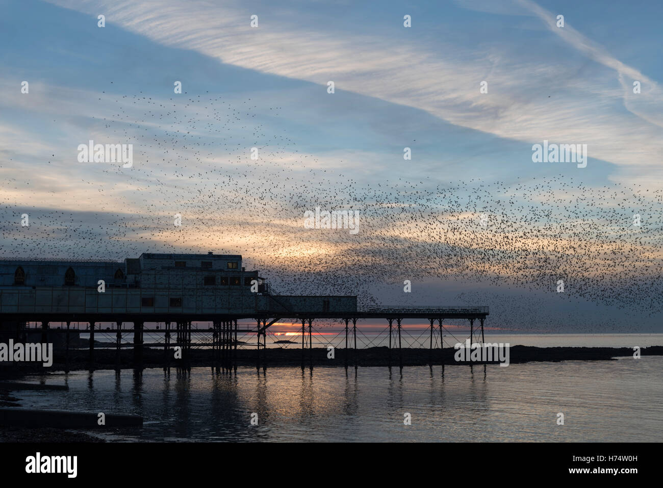 A murmuration of starlings flock over the Victorian Pier dating back to 1865. - Stock Image
