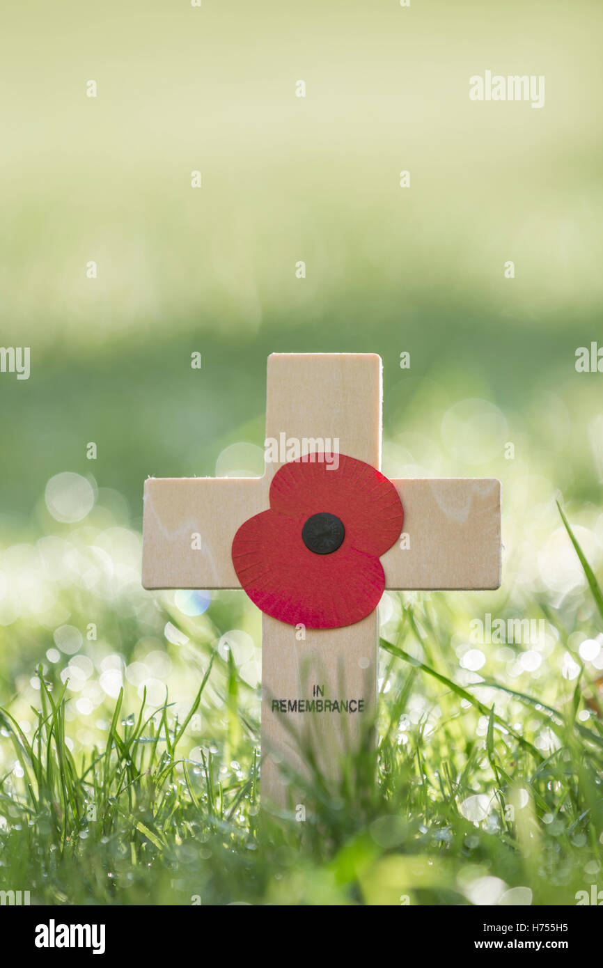 Small wooden cross of remembrance on a lawn. - Stock Image