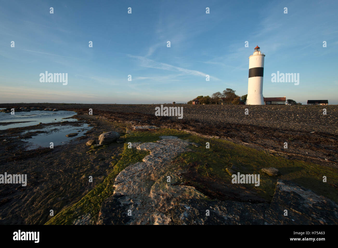 Lighthouse Långe Jan / Tall John / Langer Jan at the south cape of Öland in the Baltic Sea, Sweden - Stock Image
