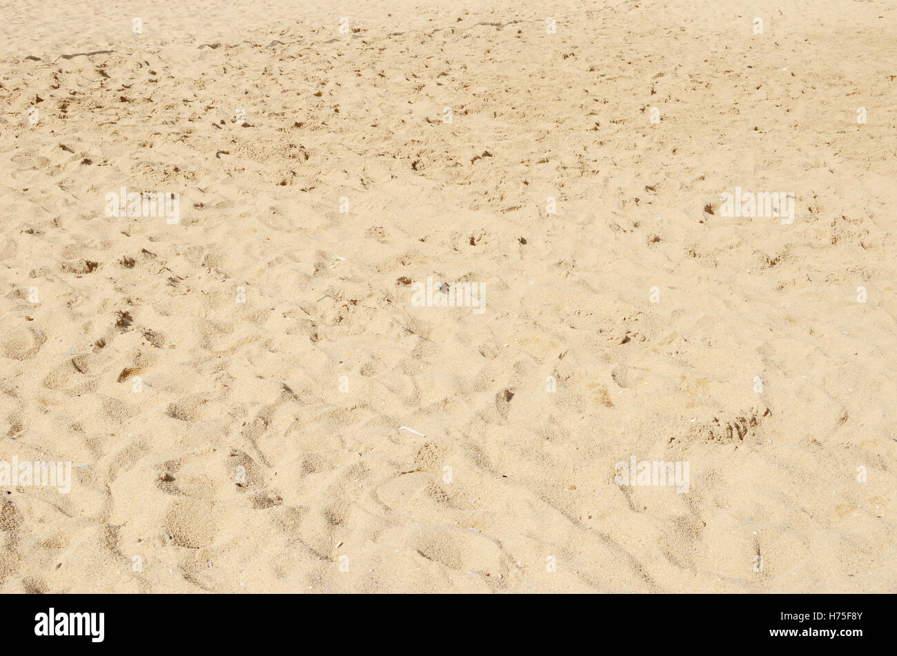 beach sand background - Stock Image
