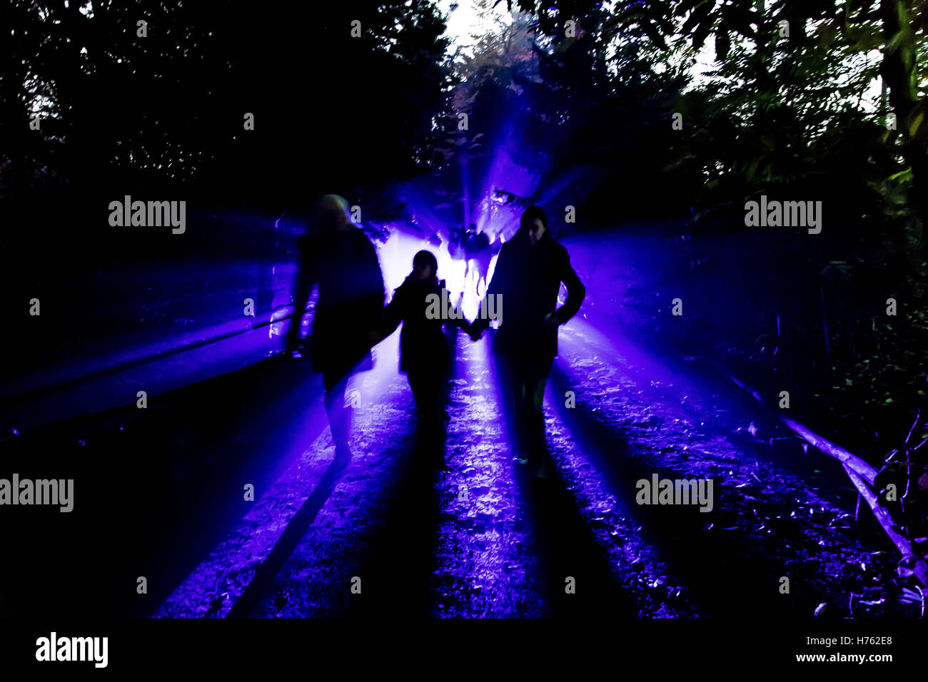 People walking at night through a park, illuminated from behind, mysterious atmosphere, big contrast, long shadows, - Stock Image