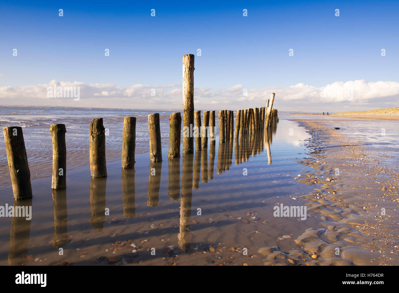 Wooden posts in the sands at West Wittering beach on a bright winter day - Stock Image