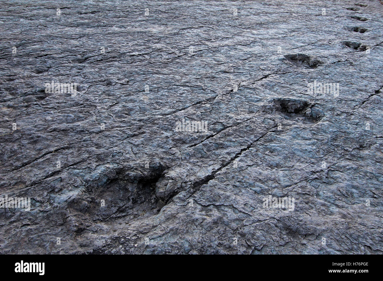 Huge dinosaur footprints, valley of Maragua, Bolivia - Stock Image