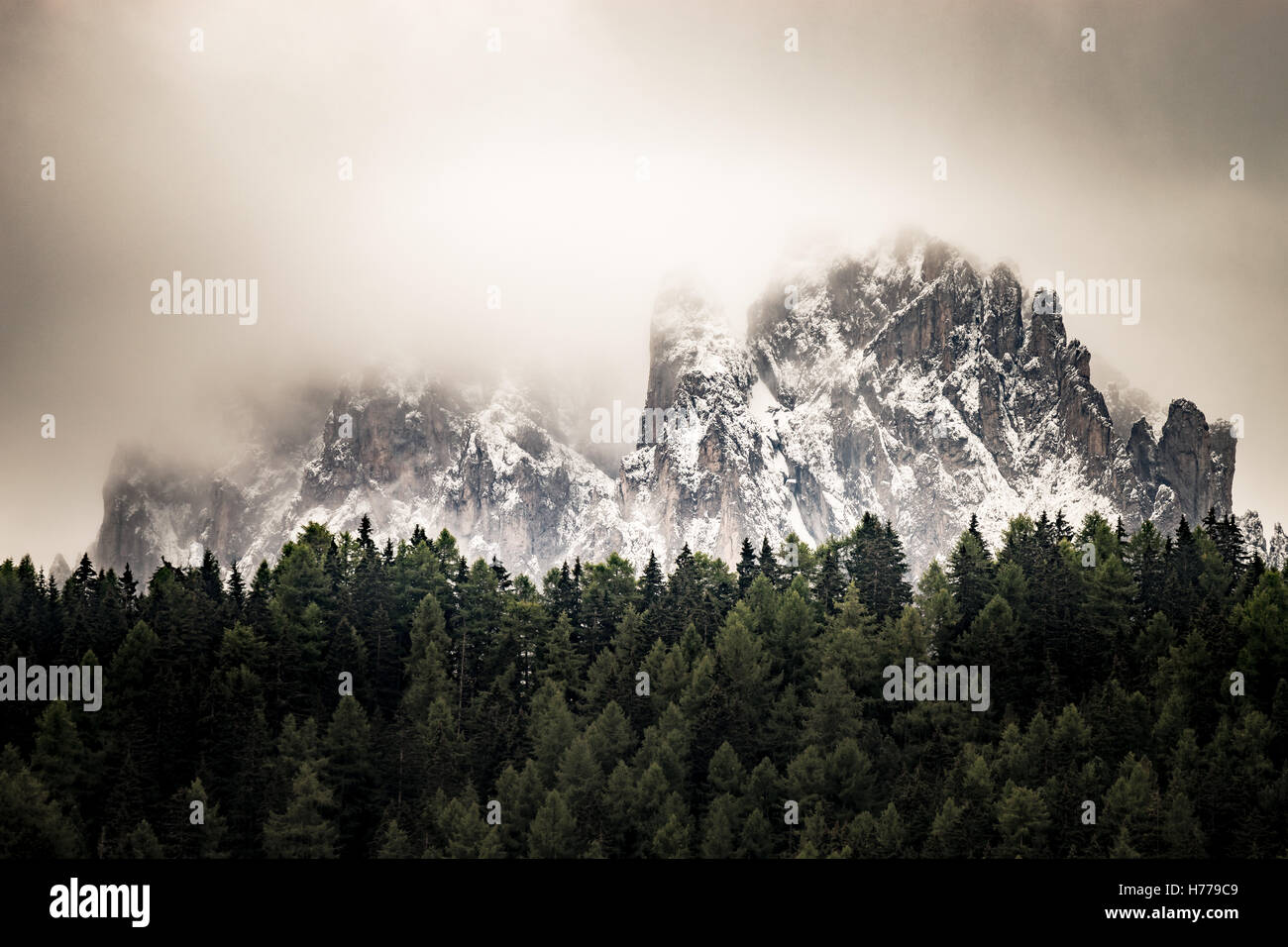 Snow covered dolomite mountains and forest, Val Gardena, South Tyrol, Italy - Stock Image