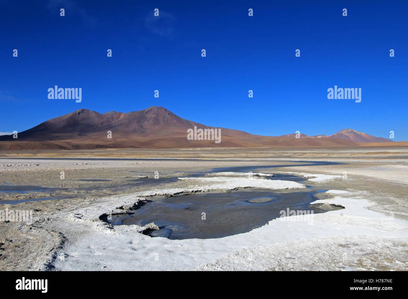 Laguna Ramaditas, altiplano, southern Bolivia South America Stock Photo