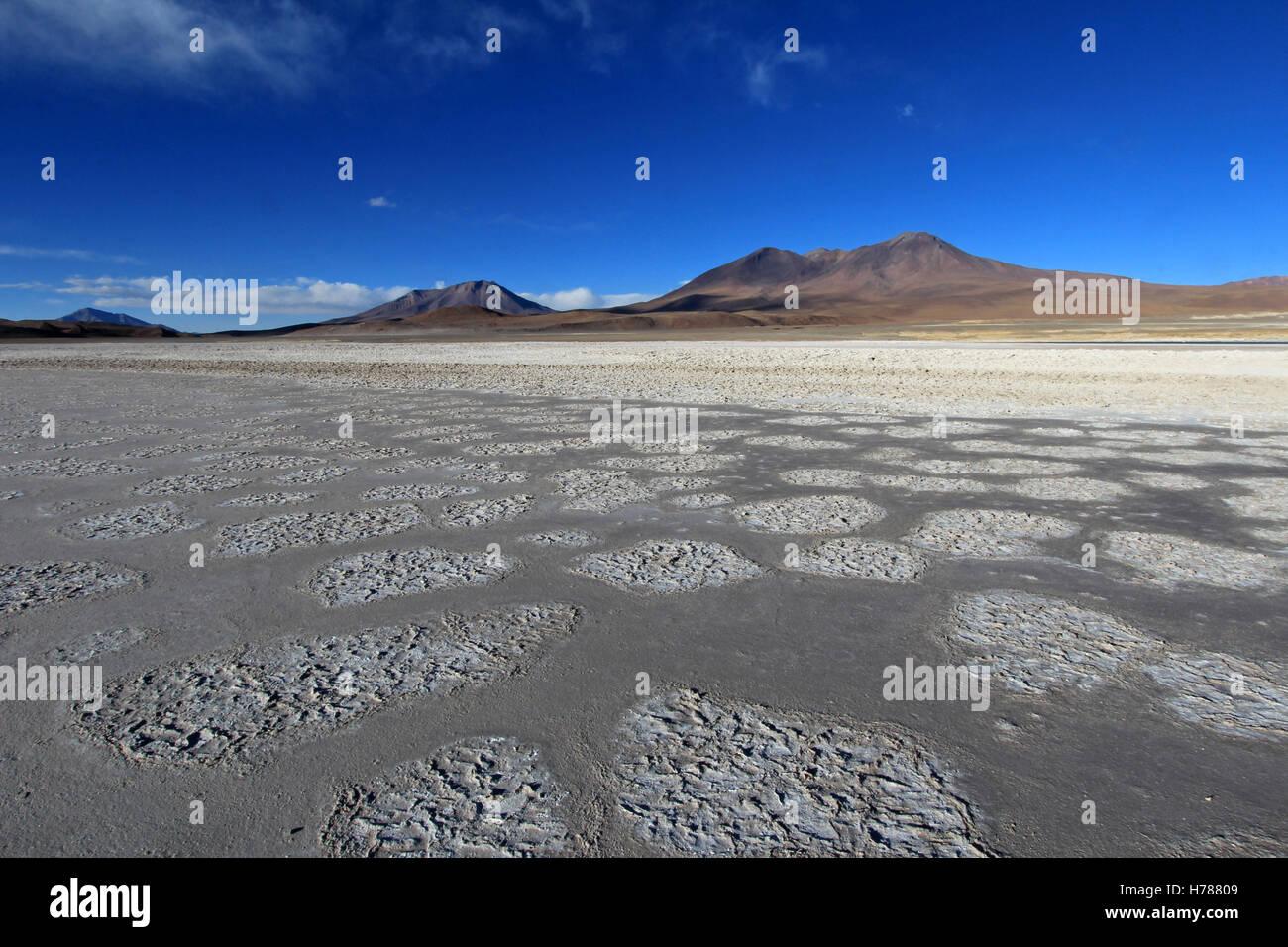 Laguna Ramaditas, altiplano, southern Bolivia South America - Stock Image