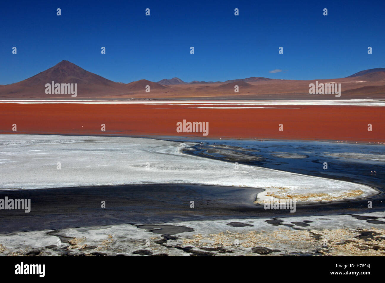 The nice red colored Laguna Colorada in southern Bolivia, South America - Stock Image