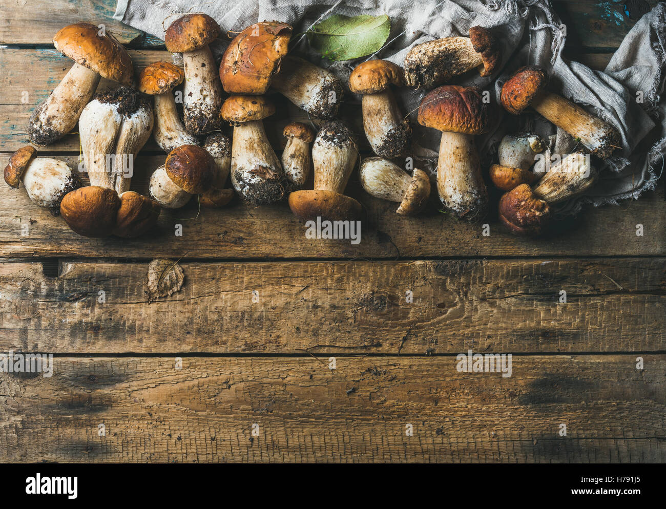 Fresh uncooked white forest mushrooms on wooden background - Stock Image