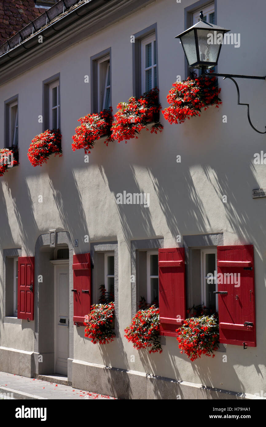 close up of flower window boxes on old building in Rothenburg ob der Tauber,medieval town, Bavaria,Germany - Stock Image