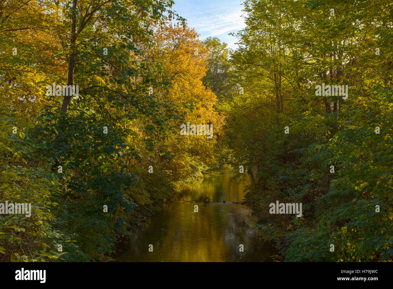 River and autumn trees - Stock Image