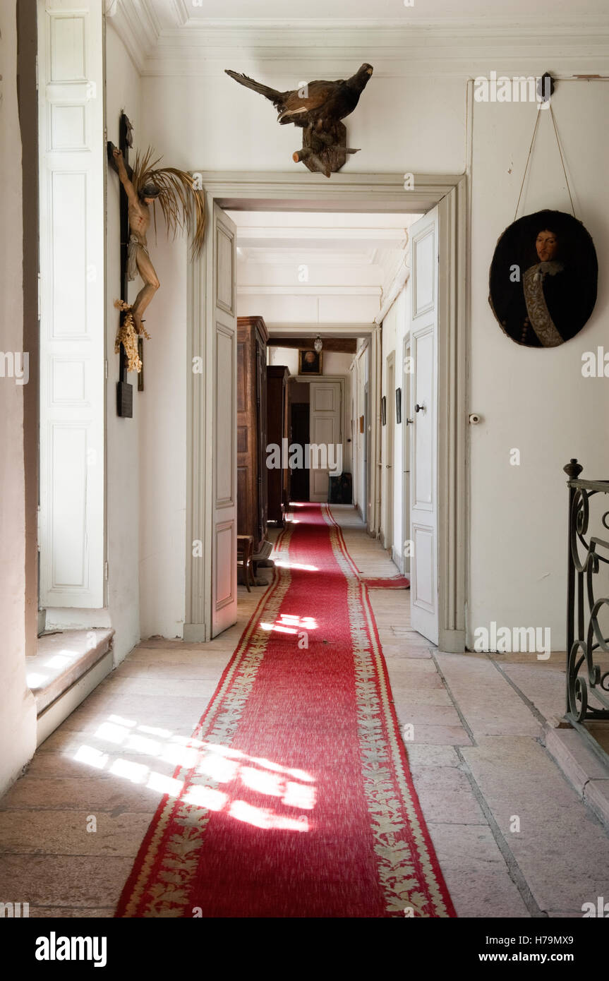 Red Carpet Runner In Hallway Of Corridor In 18th Century