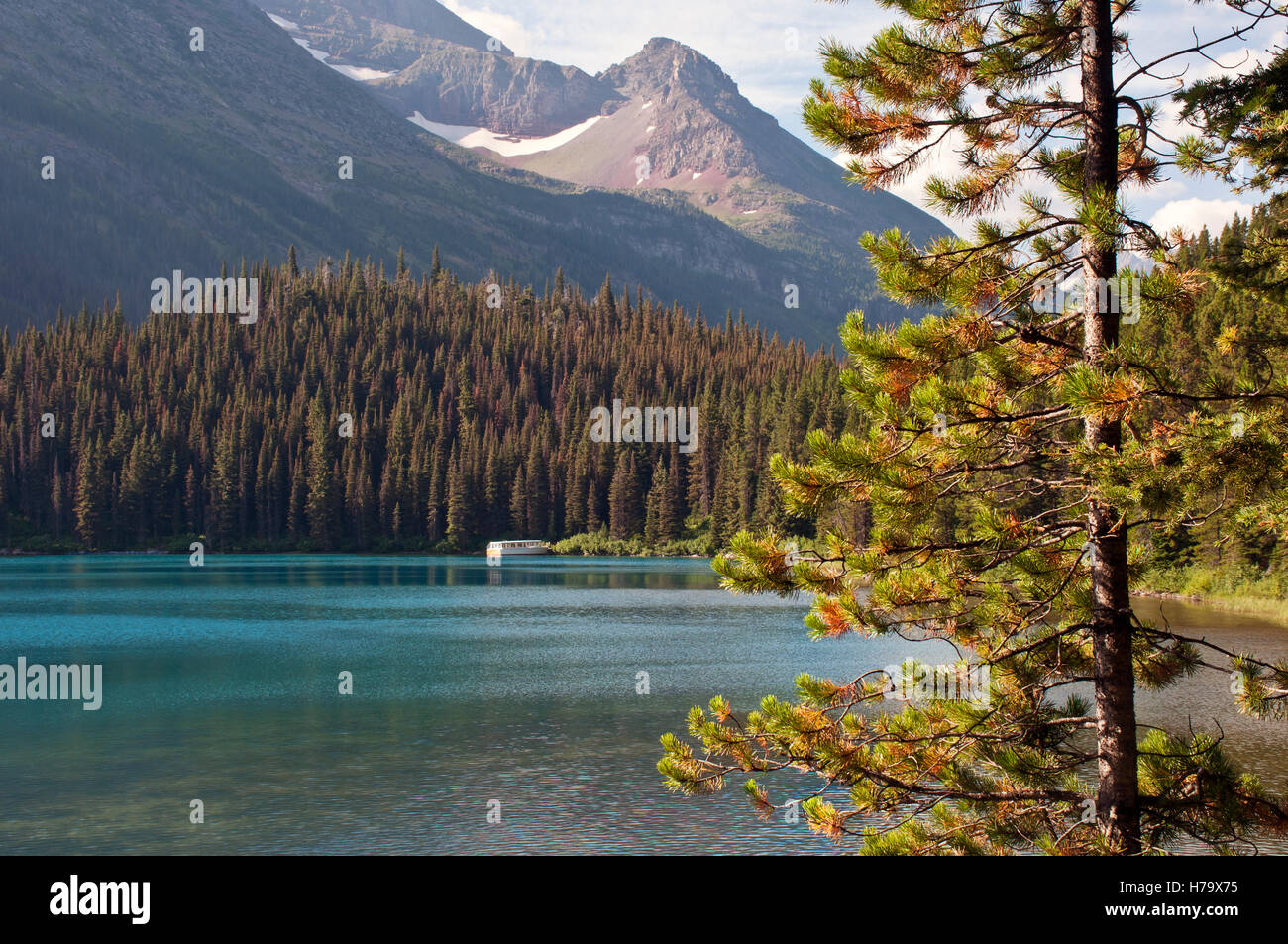 Swift current lake in Glacier National Park, Montana, USA - Stock Image