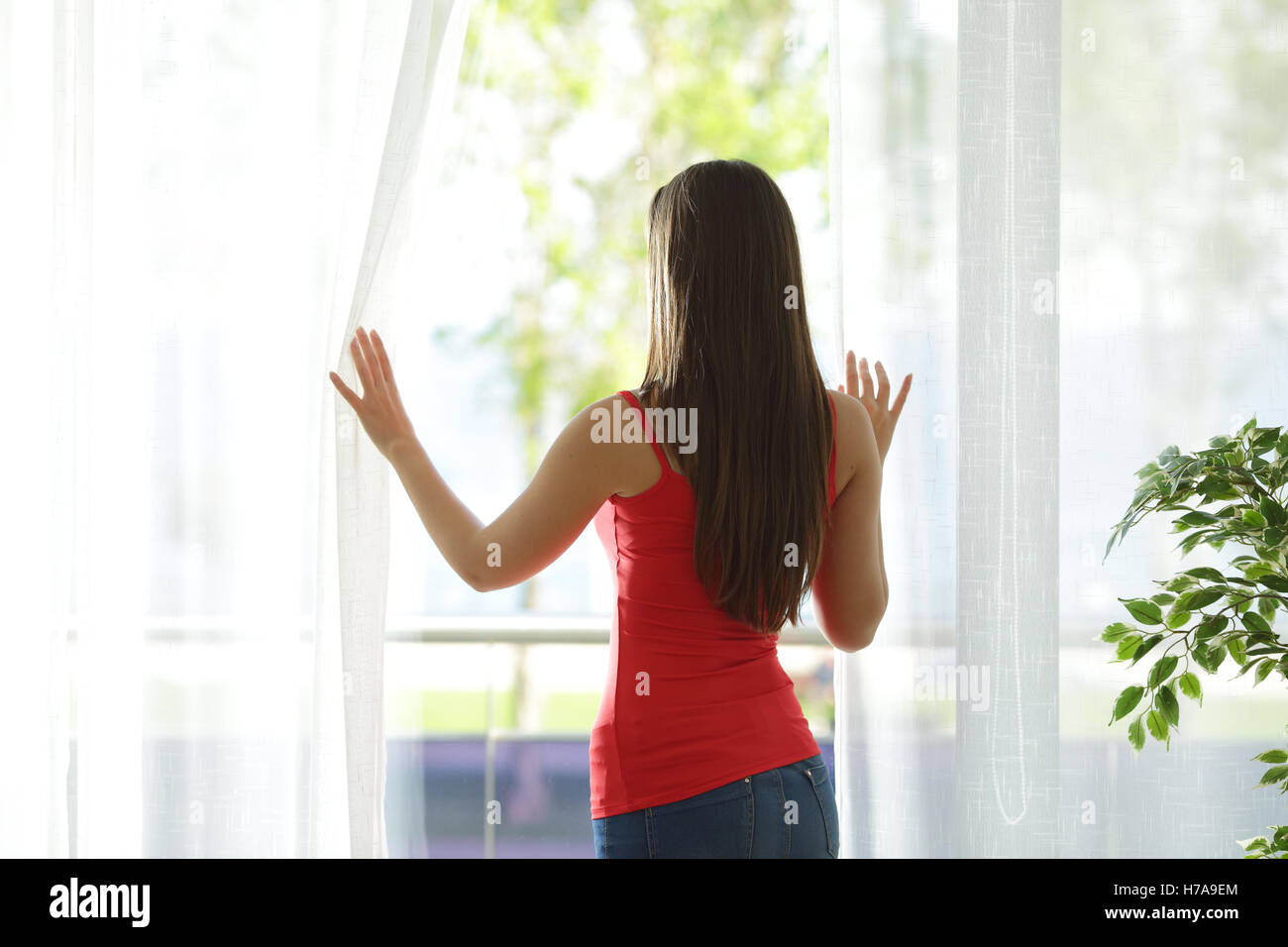 Back view of a woman looking outdoors through a window and opening curtains at home - Stock Image