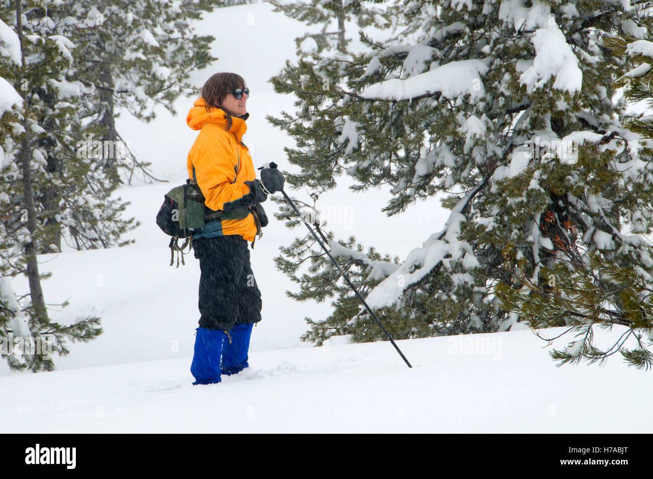 Snowshoeing near Benson Sno-park, Santiam Recreation Area, Willamette National Forest, Oregon - Stock Image