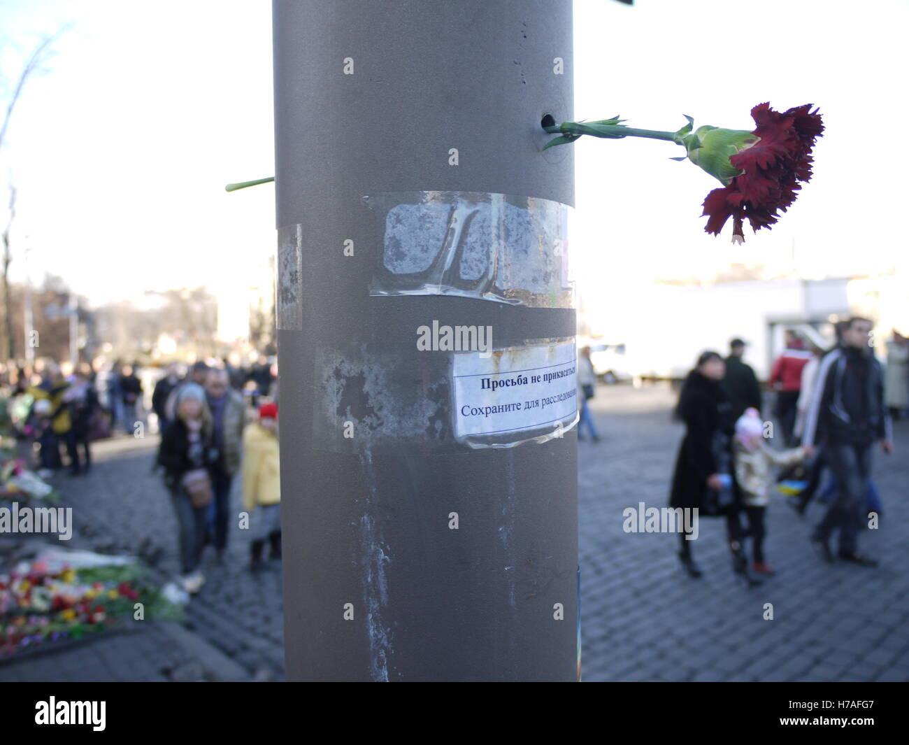 In Kiev city center, a flower in a bullet hole pays tribute to victims of revolution, a few days after fall of Yanukovych - Stock Image