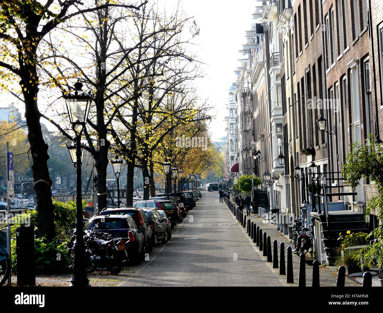 City street near canal, Amsterdam. City urban life, quiet alley, afternoon light. Row of houses and cars and trees. - Stock Image