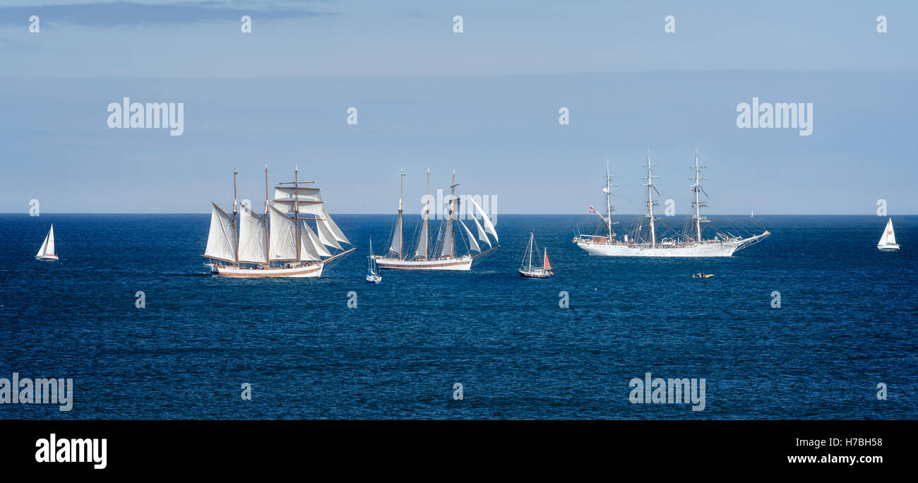 Composite of some of the 2016 Tall Ships Race Participants - Stock Image