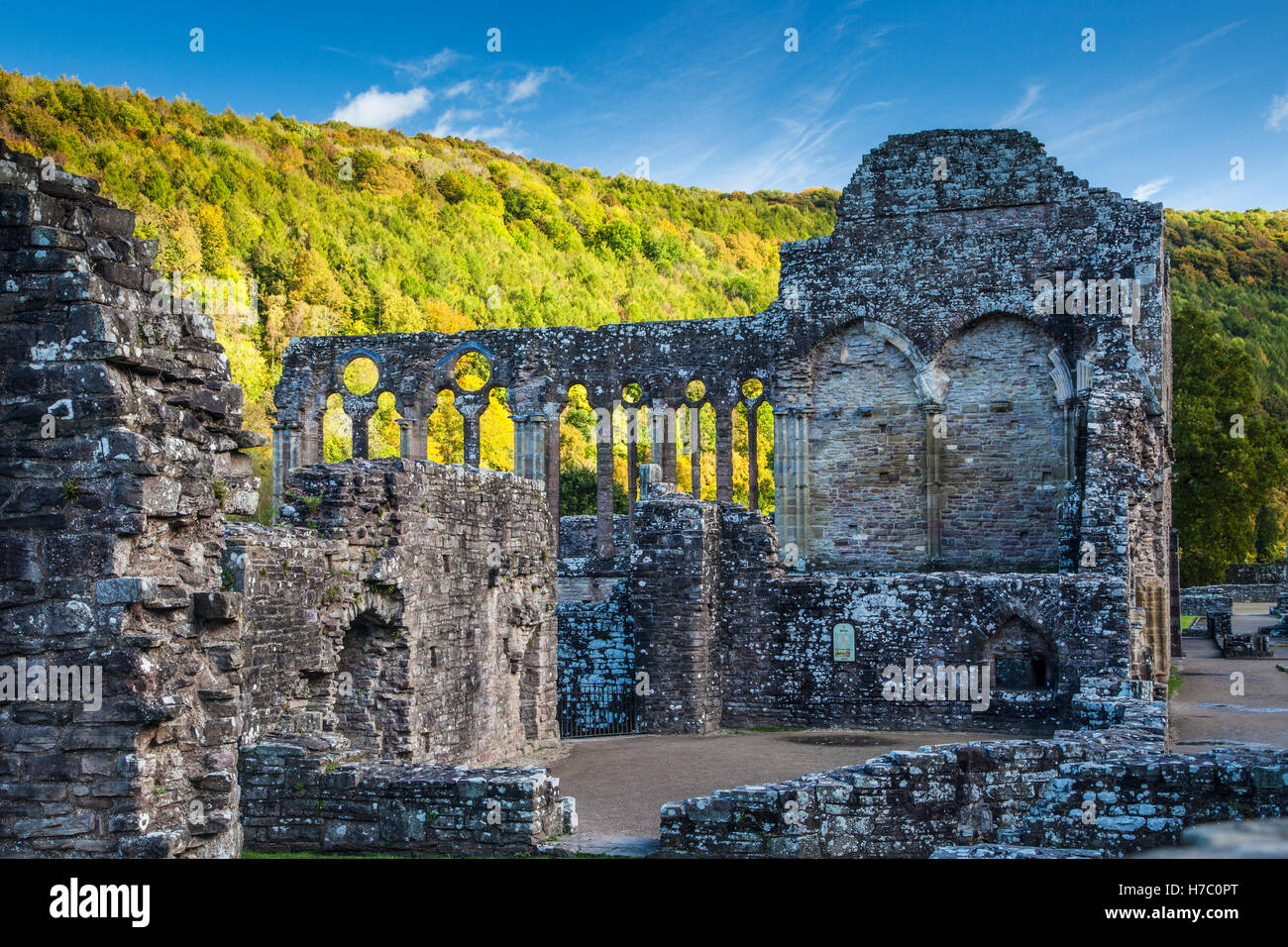 Tintern Abbey in Monmouthshire, Wales. - Stock Image