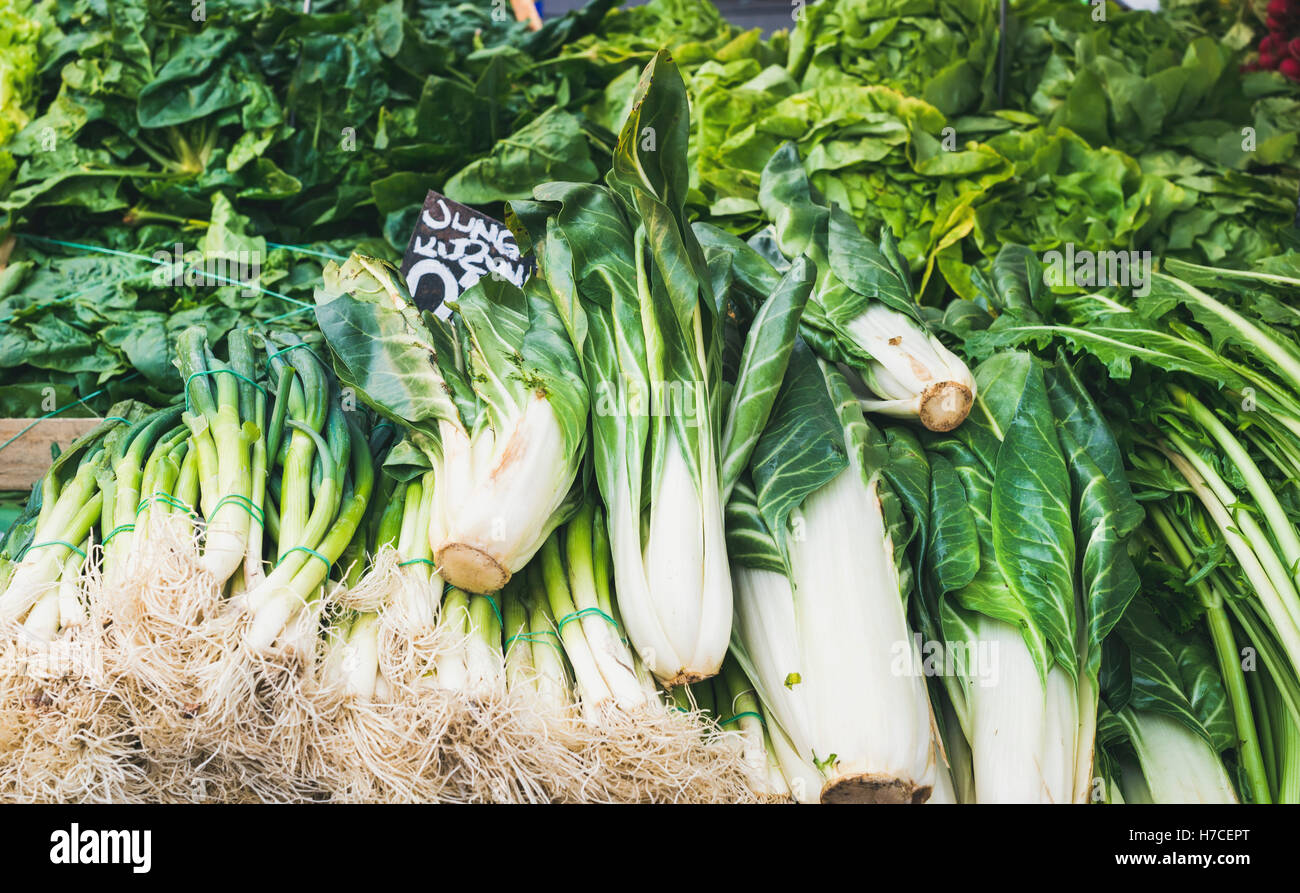 Various fresh green vegetables and herbs on market stall with price label in German at food market in Vienna - Stock Image