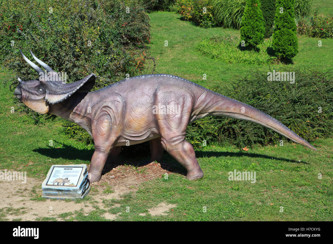 A Triceratops (Late Cretaceous) at the Jura Avantura exhibition in the Kalemegdan Fortress in Belgrade, Serbia - Stock Image