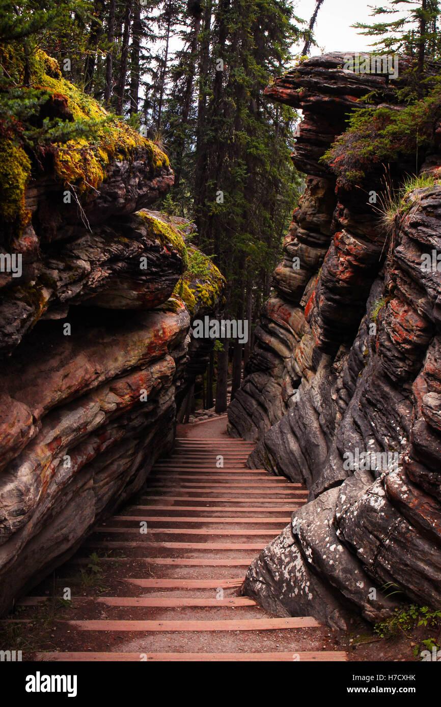 Athabasca - Stock Image