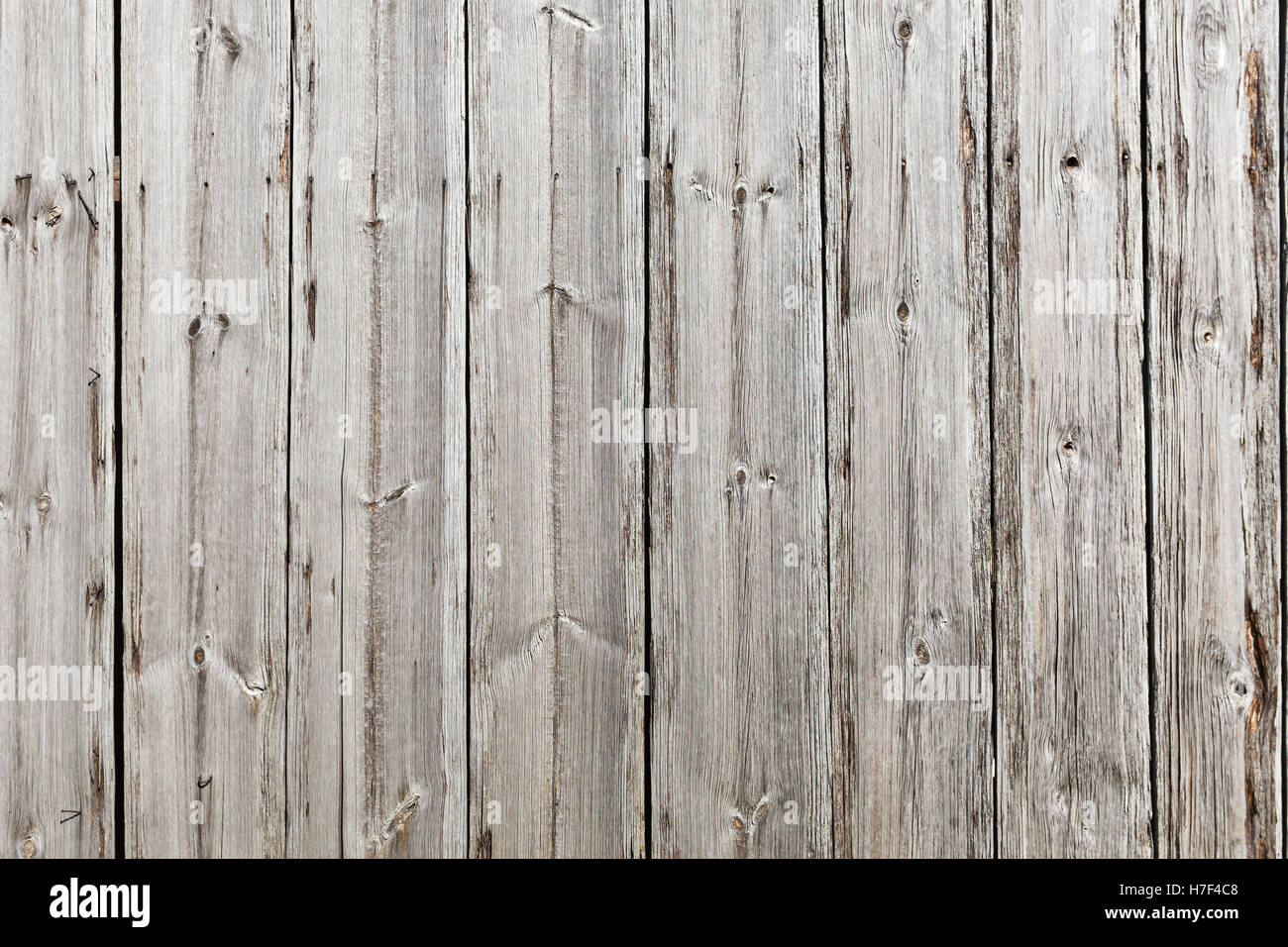 Wooden floor, grey color background, vertical lines, horizontal orientation - Stock Image