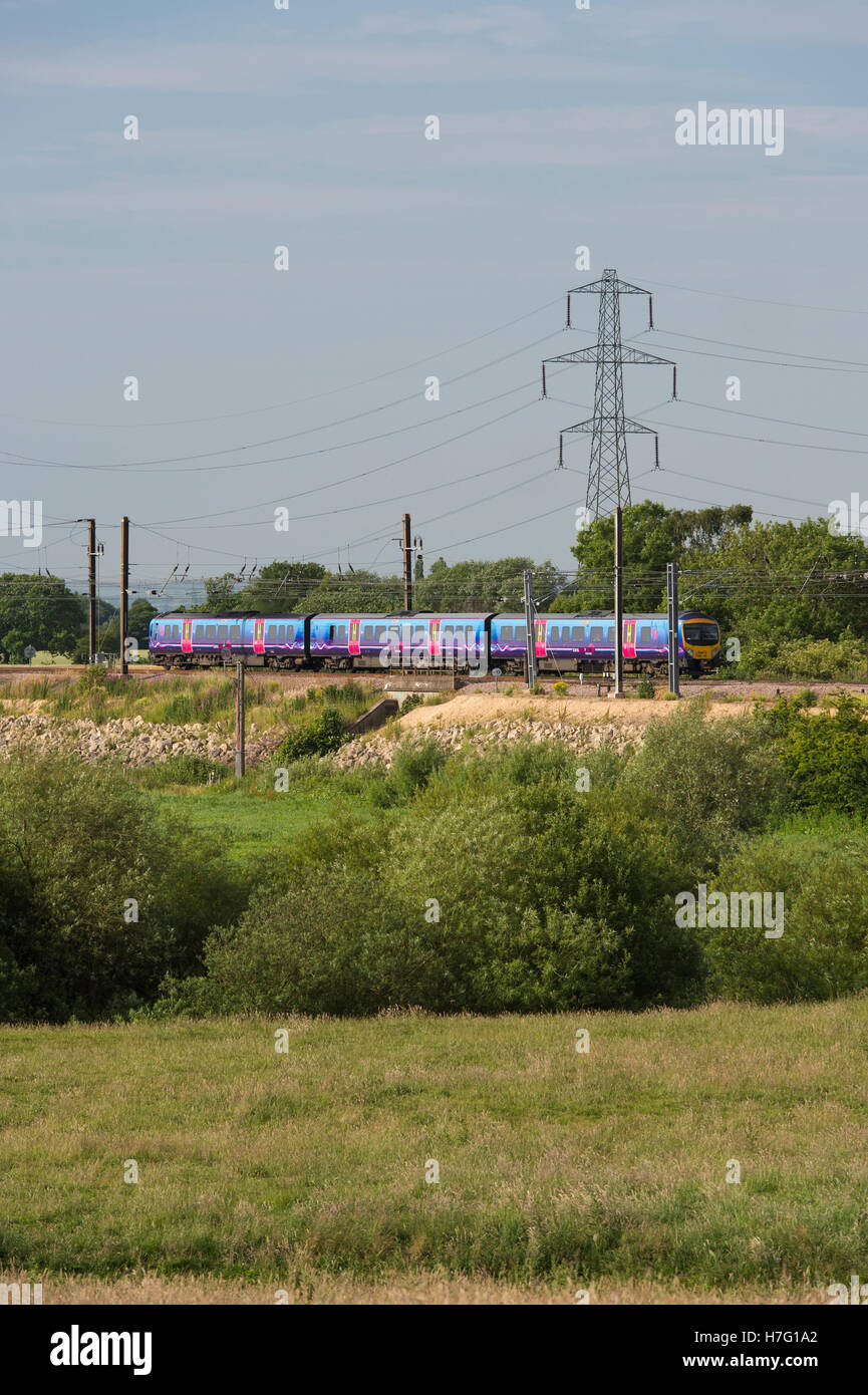 TransPennine Express, diesel multiple-unit train, travelling through countryside on the  East Coast Line near York, - Stock Image