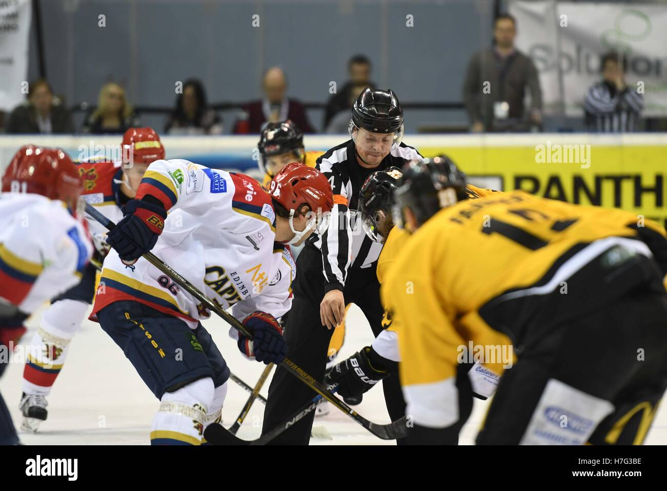 Ice Hockey official/referee dropping the puck during an opening face off - Stock Image