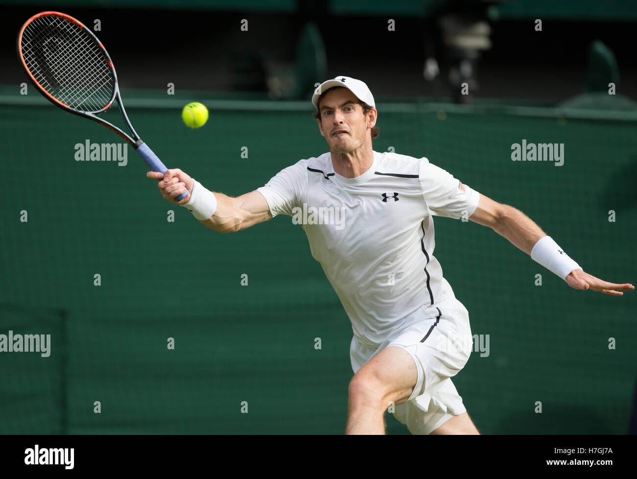 ANDY MURRAY (GBR) at Wimbledon 2016 Stock Photo