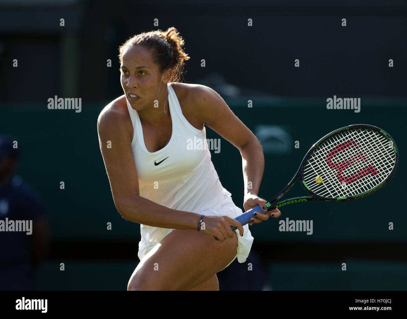 Madison Keys (USA) in action at Wimbledon 2016 - Stock Image