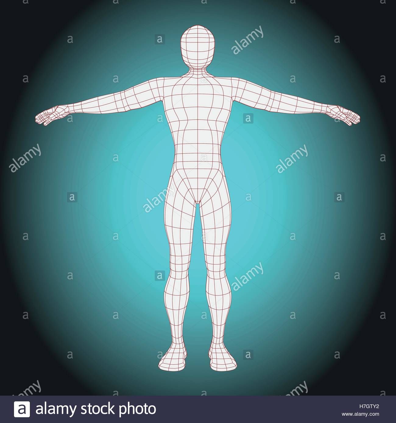 futuristic wireframe man body vector illustration of the human body stock vector image art alamy https www alamy com stock photo futuristic wireframe man body vector illustration of the human body 125145974 html