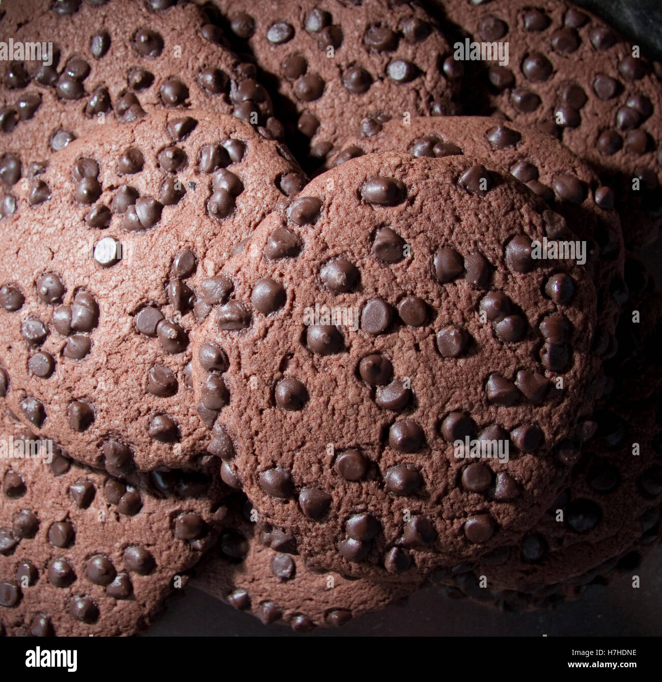 Closeup of chocolate cookies/biscuits - Stock Image