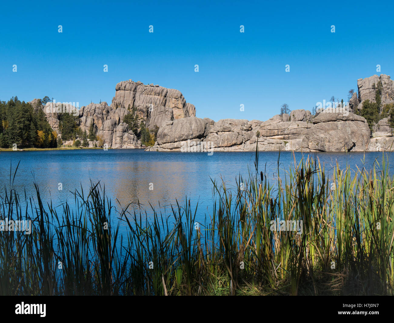 Catttails and rock formations, Sylvan Lake,  Needles Highway, Custer State Park, South Dakota. - Stock Image