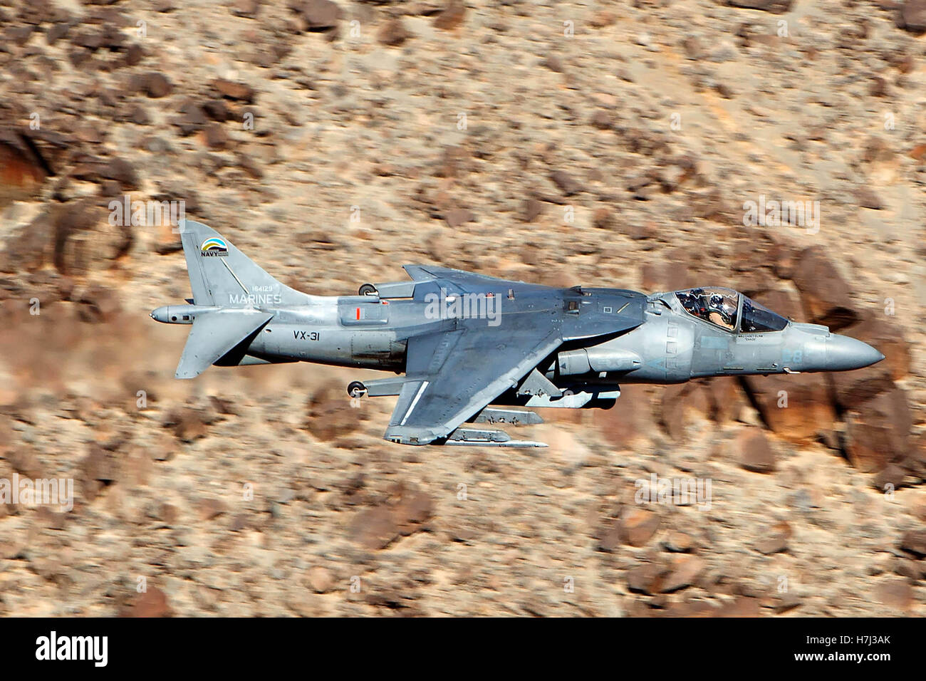 McDonnell Douglas AV-8B+ Harrier II DD-08 of the US Navy's VX-31 Dust Devils squadron flies low level through the Stock Photo
