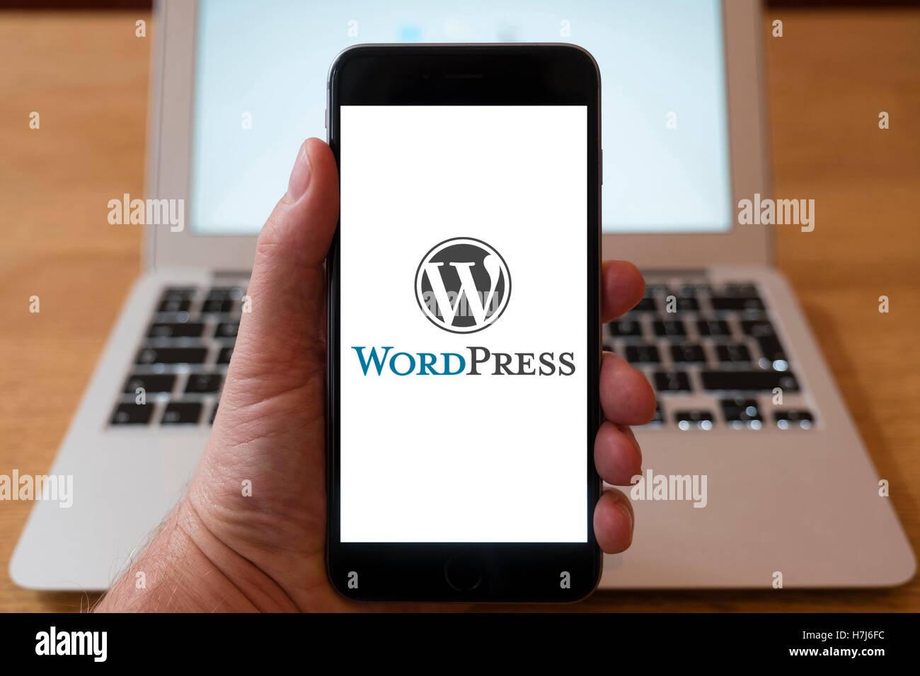 Using iPhone smart phone to display logo of Wordpress blog publishing service - Stock Image