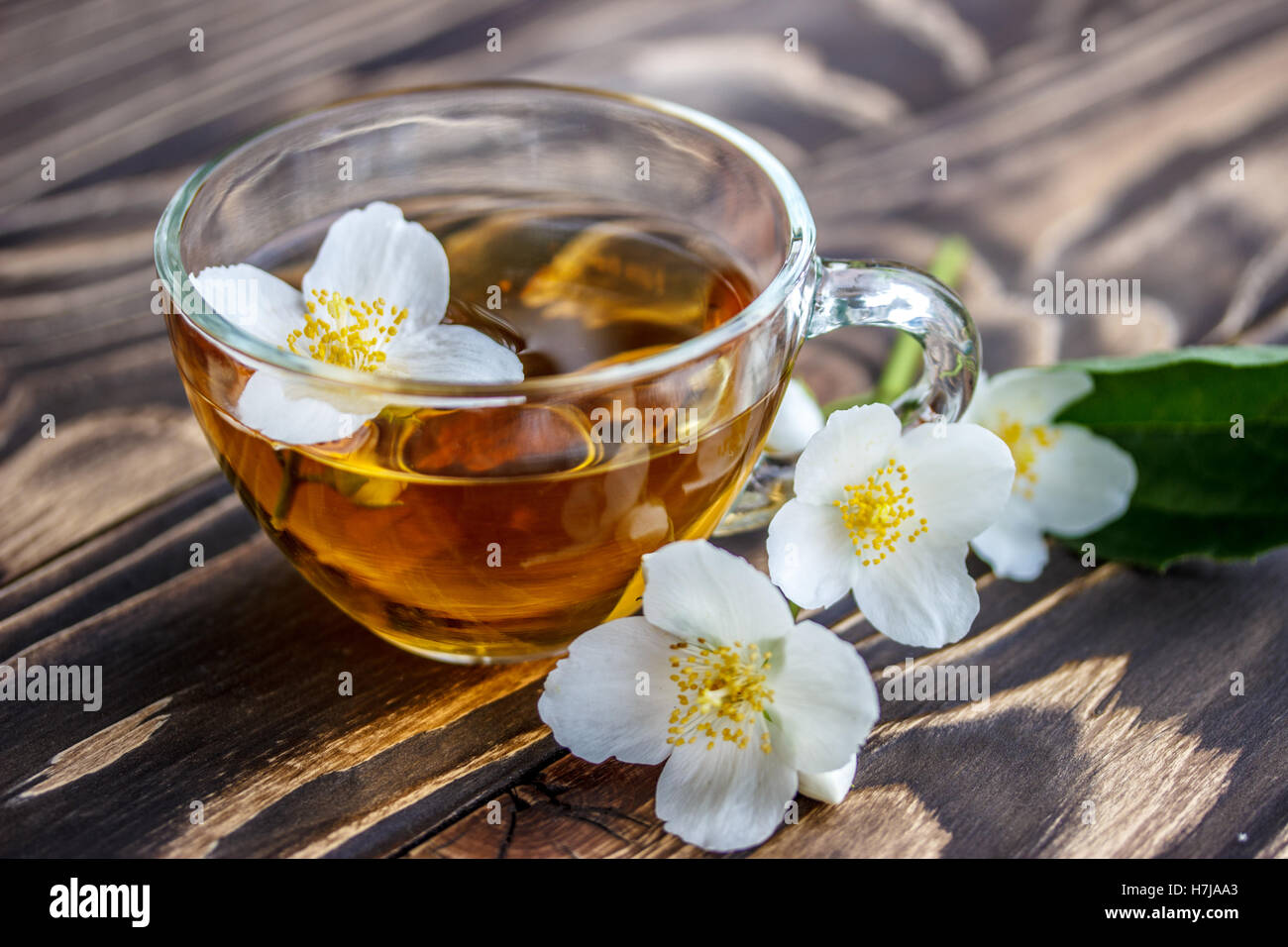 Green Jasmine Tea Stock Photos Green Jasmine Tea Stock Images Alamy