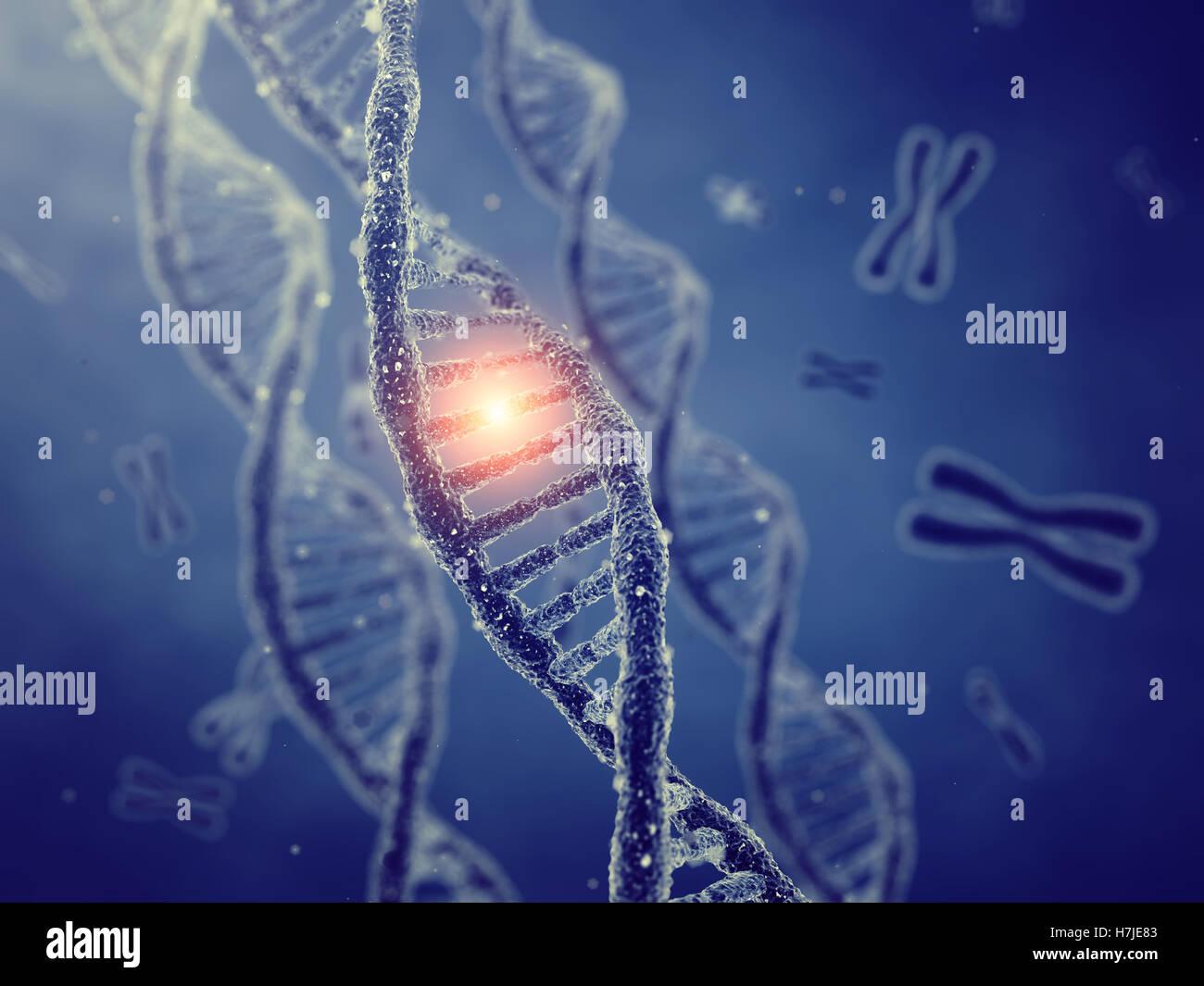 Dna double helix molecules and chromosomes , Gene mutation , Genetic code - Stock Image