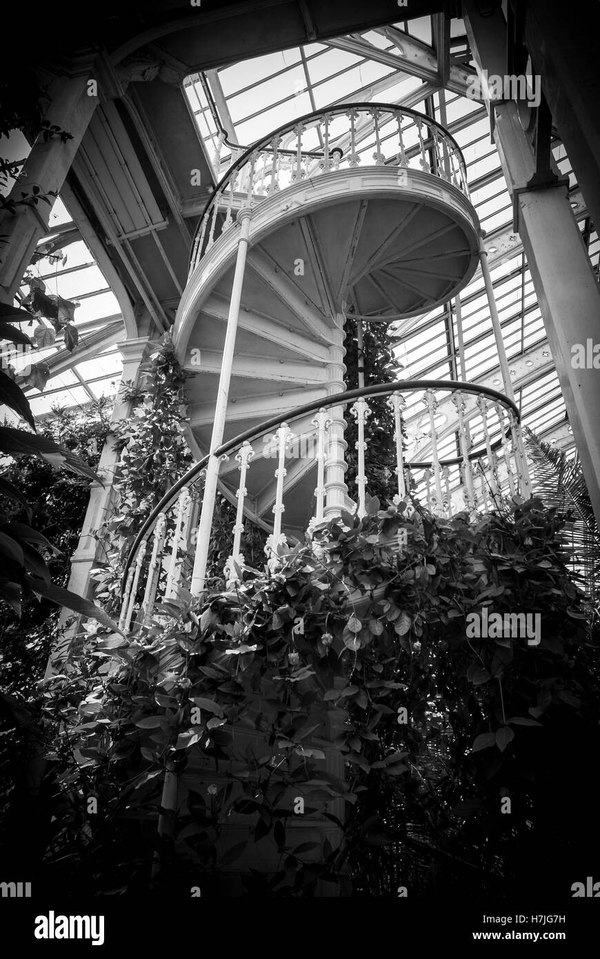 Staircase inside a Victorian greenhouse in Kew Gardens - Stock Image