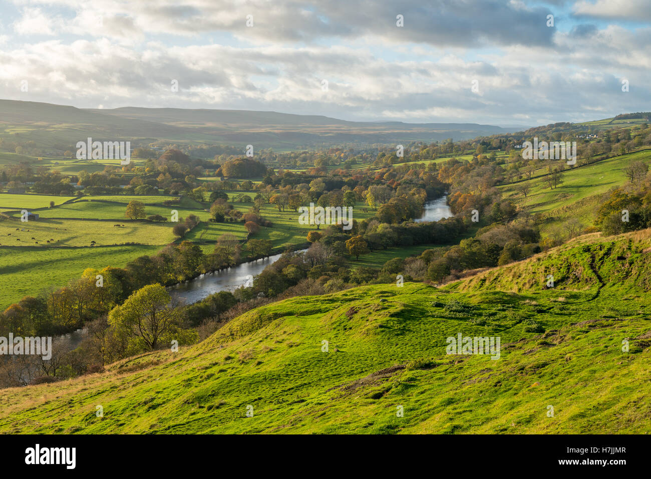 The River Tees running through Upper Teesdale in County Durham - Stock Image