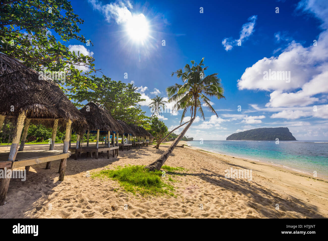 Tropical beach with a coconut palm trees and a beach fales, Samoa Islands - Stock Image
