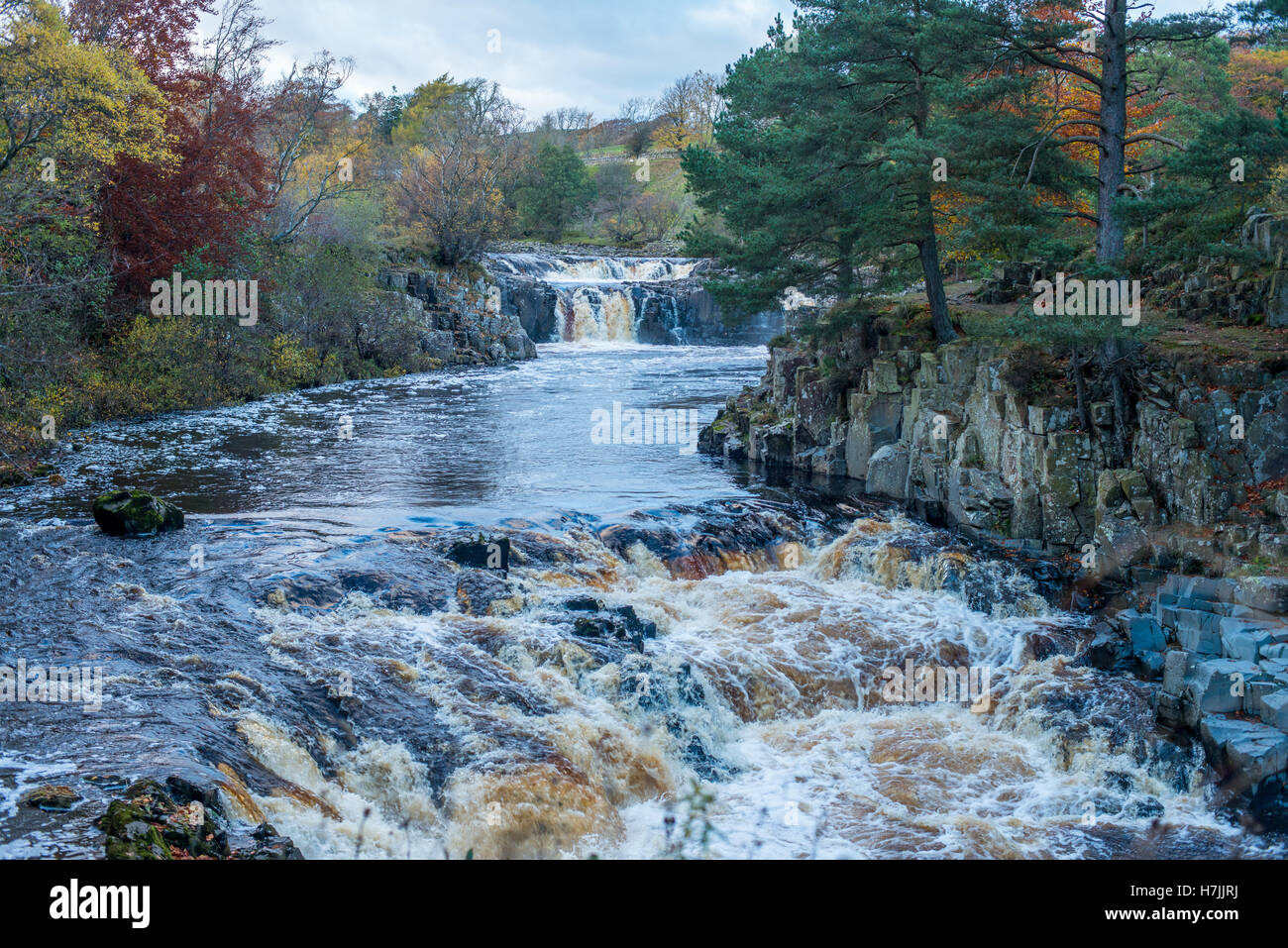 The River Tees running through Low Force Waterfall in Teesdale. - Stock Image