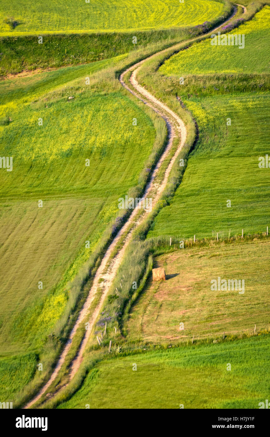 Dirt road in a countryside Stock Photo