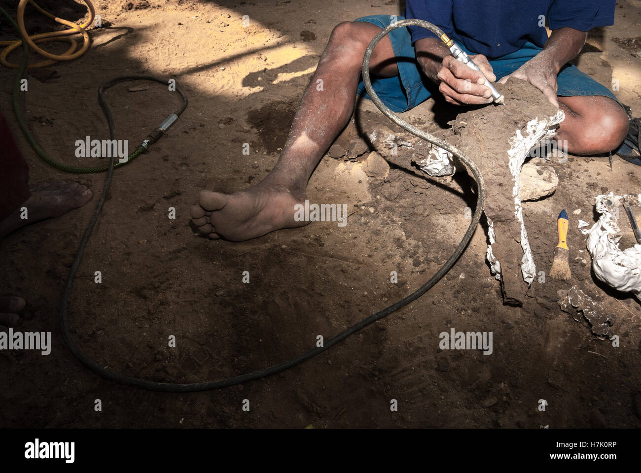 Worker is using air-abrasive tool to clean a wrapped fossil. - Stock Image