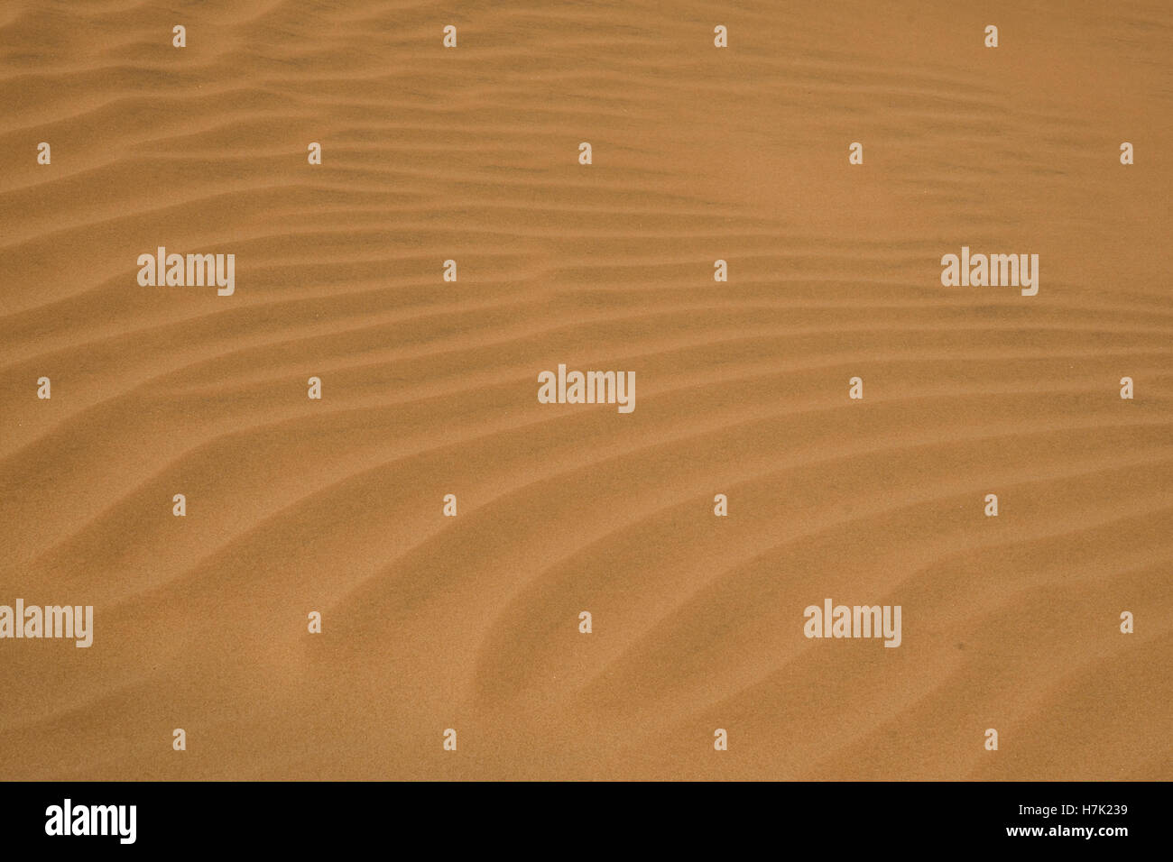 Sand Background Beach or Desert Shape structure - Stock Image