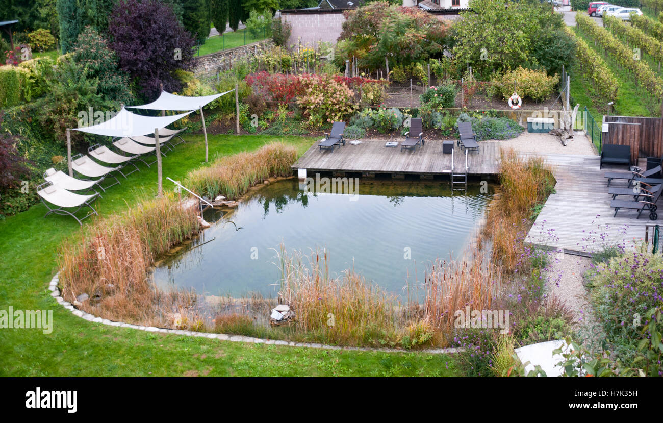 Ecological Swimming Pool Plants Are Used To Keep The Water Clean