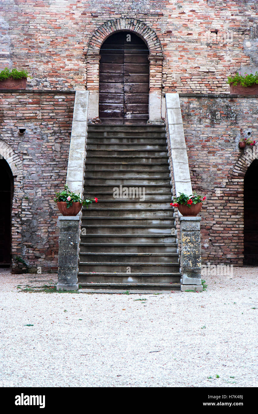 Shot of two flowers on a stairs, one reaching out to another somewhere in Italy. - Stock Image
